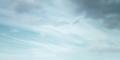 PB-FTTP Sky.png